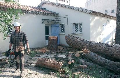 Démontage manuel d'un arbre
