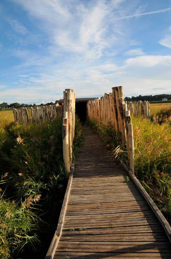 Entrée de l'observatoire en bois en milieu naturel