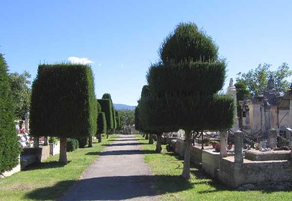 Taille d'ornement au cimetière de Goult