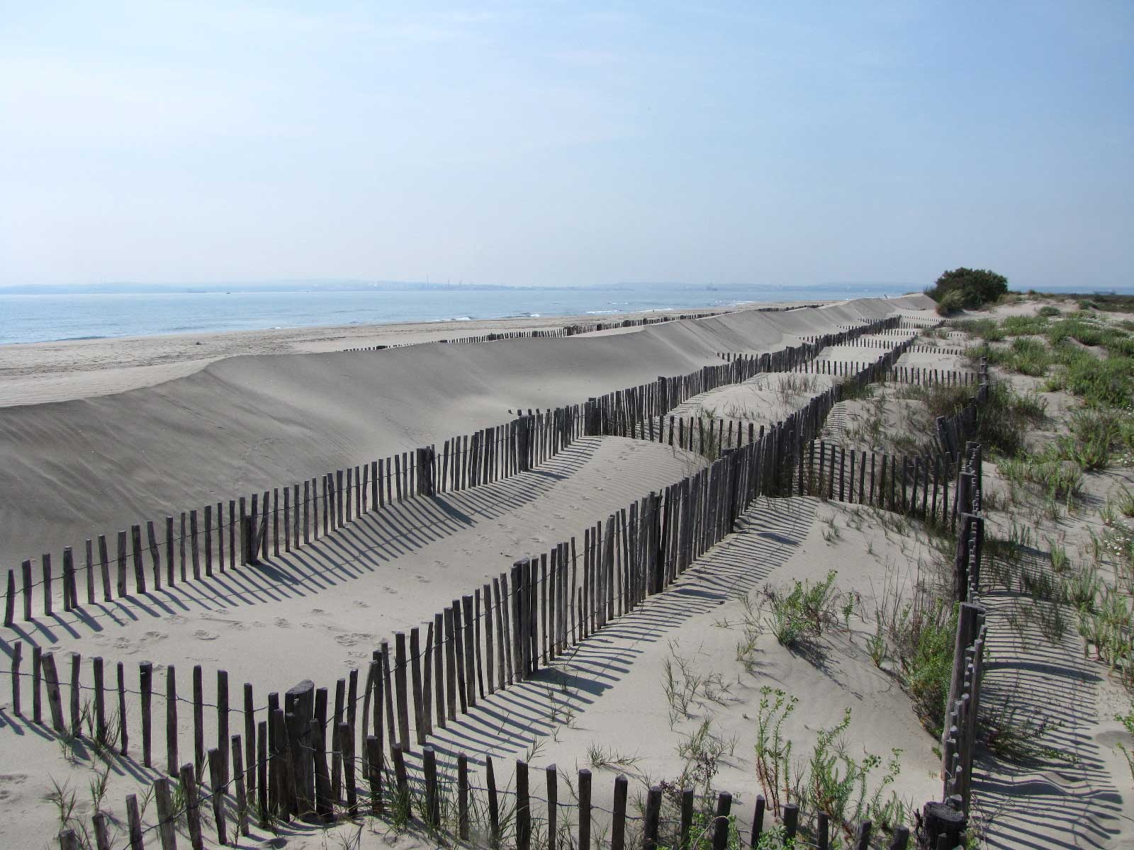 Stabilisation de dune avec des ganivelles
