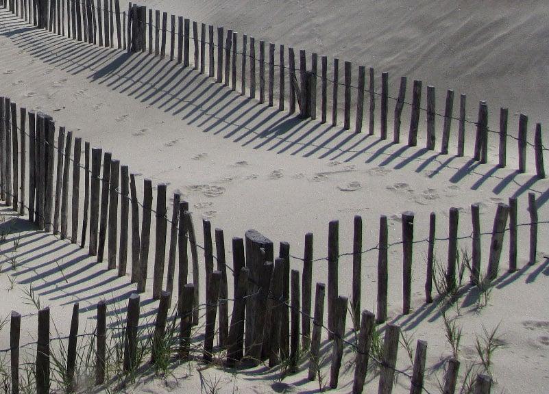 La ganivelle : clôture formée par l'assemblage vertical de piquets de châtaignier refendus pour stabiliser la dune