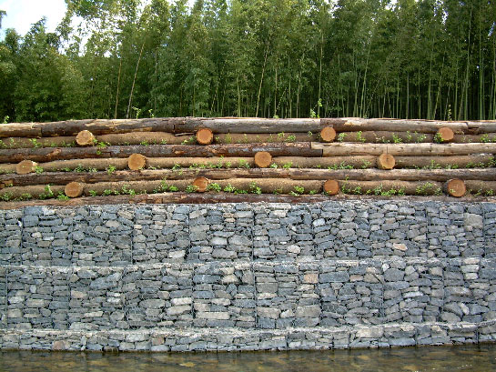 confortement de berges en g nie v g tal et gabions. Black Bedroom Furniture Sets. Home Design Ideas