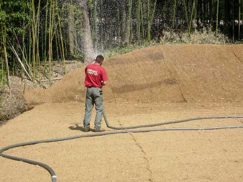 Ensemencement hydraulique sur berge à Anduze, la Bambouseraie