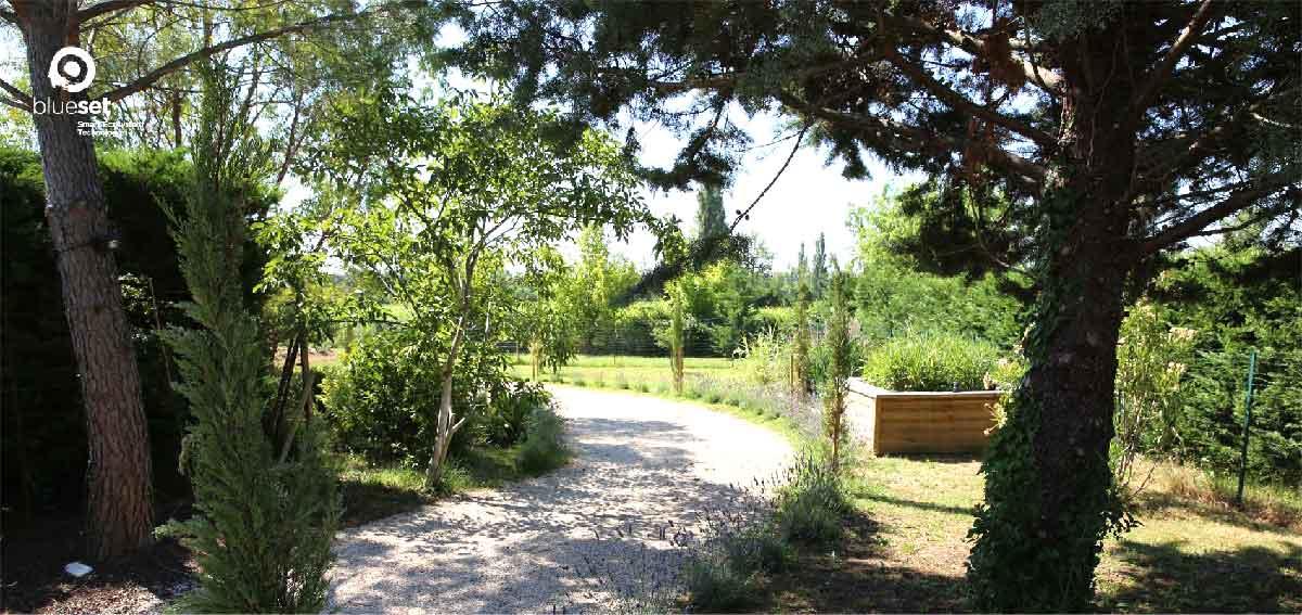 Phytoépuration : La Compagnie des Forestiers est installateur agréé BlueSET pour votre phytostation sur les Bouches du Rhône et le Var