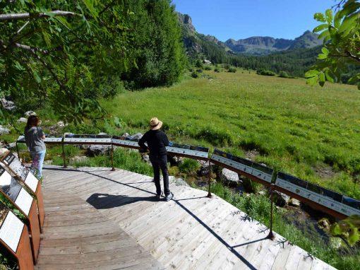 Aménagement bois – cheminement et passerelle à la source du Var – Entraunes – (Alpes-Maritimes, 06)