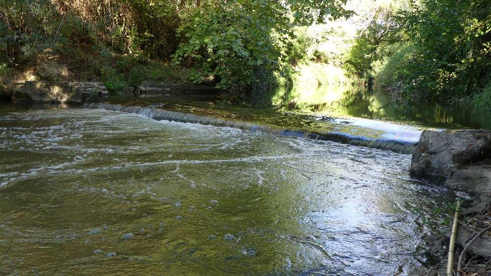 Continuité écologique - Arasement / suppression d'un seuil - cours d'eau de l'Arc