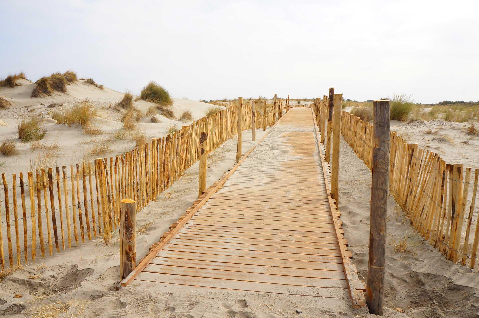 Cheminement en bois avec émergence irrégulière de pieux battus - Plage de Beauduc pour le Conservatoire du littoral