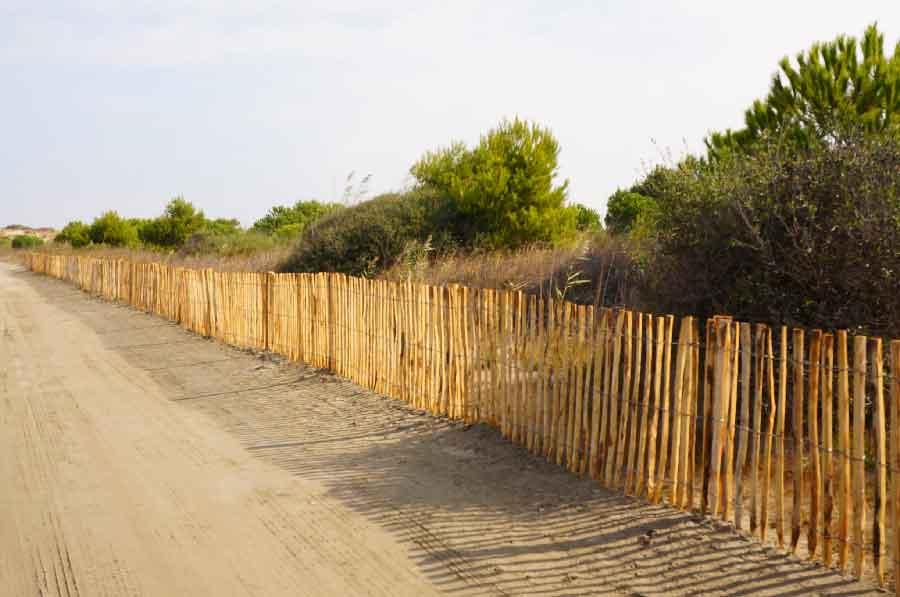 Mise en place de ganivelles pour protéger une dune