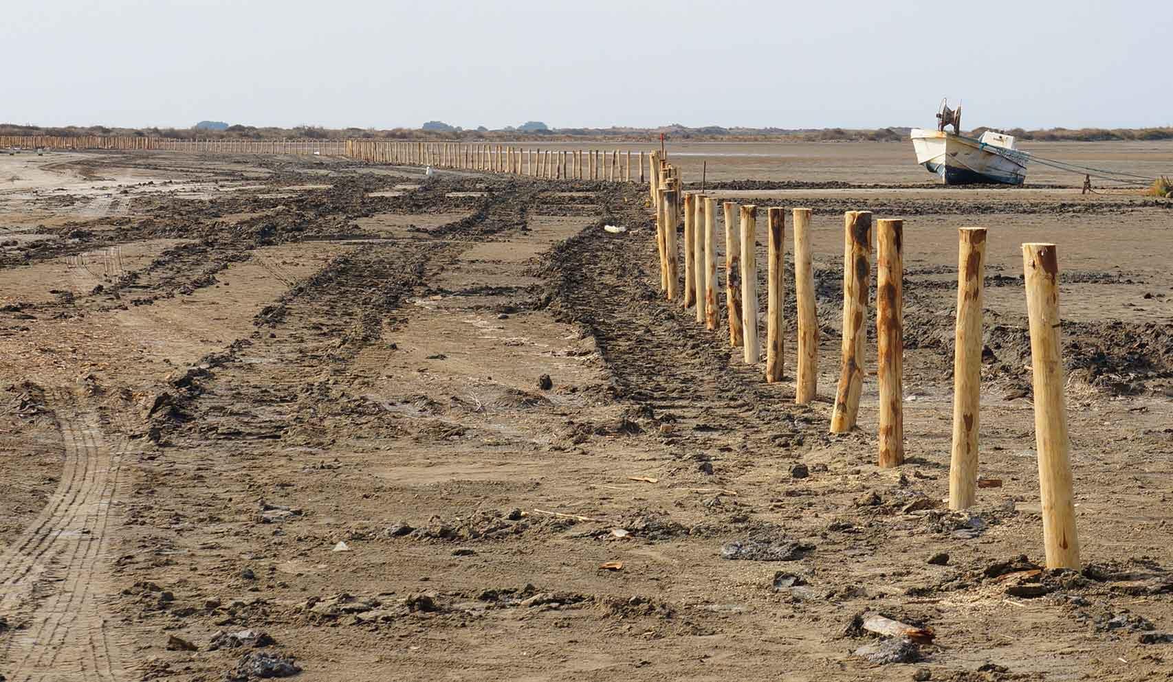 Pieux de contention en châtaignier battus à la pelle mécanique, plage de Beauduc pour le Conservatoire du littoral