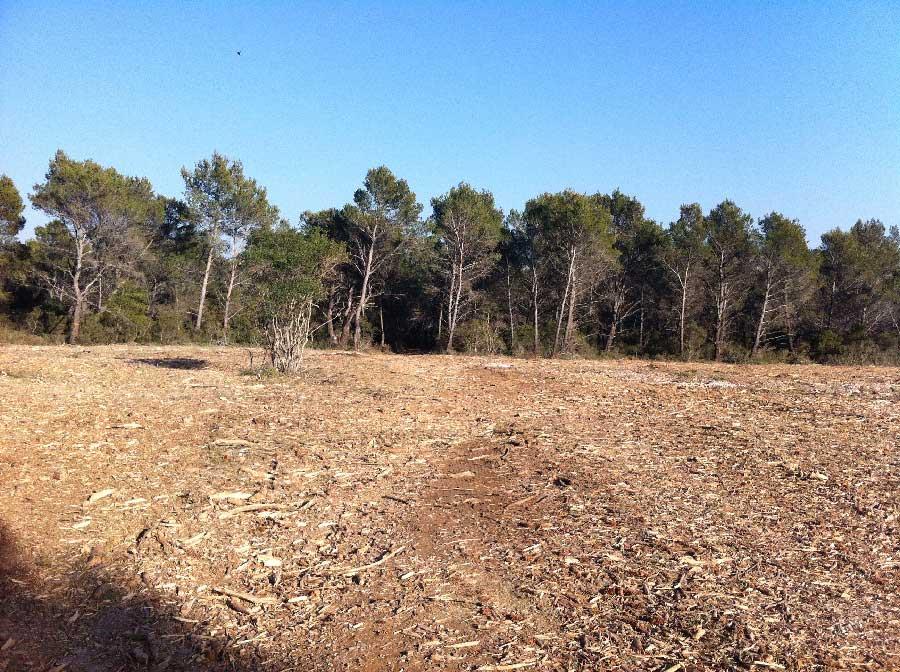 Libération d'emprises - Tracteur forestier Valtra 220ch pour débroussaillage et broyage