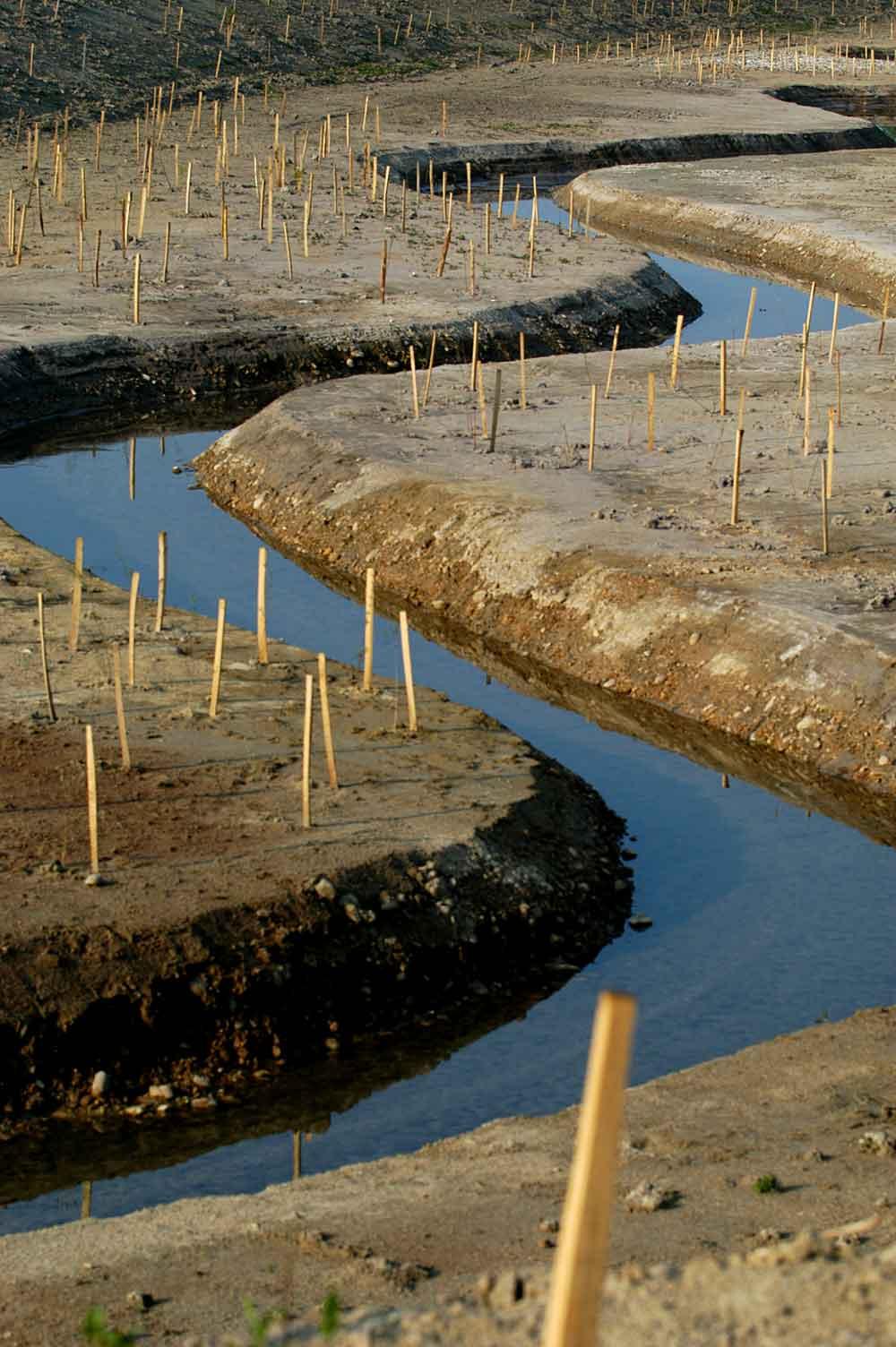 Mesure compensatoire : dérivation d'un cours d'eau et végétalisation