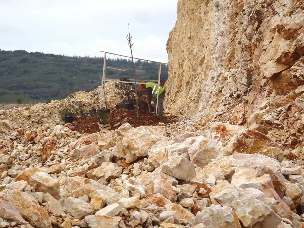 Réhabilitation de carrière - Plantation de plants forestiers avec amendement de sol