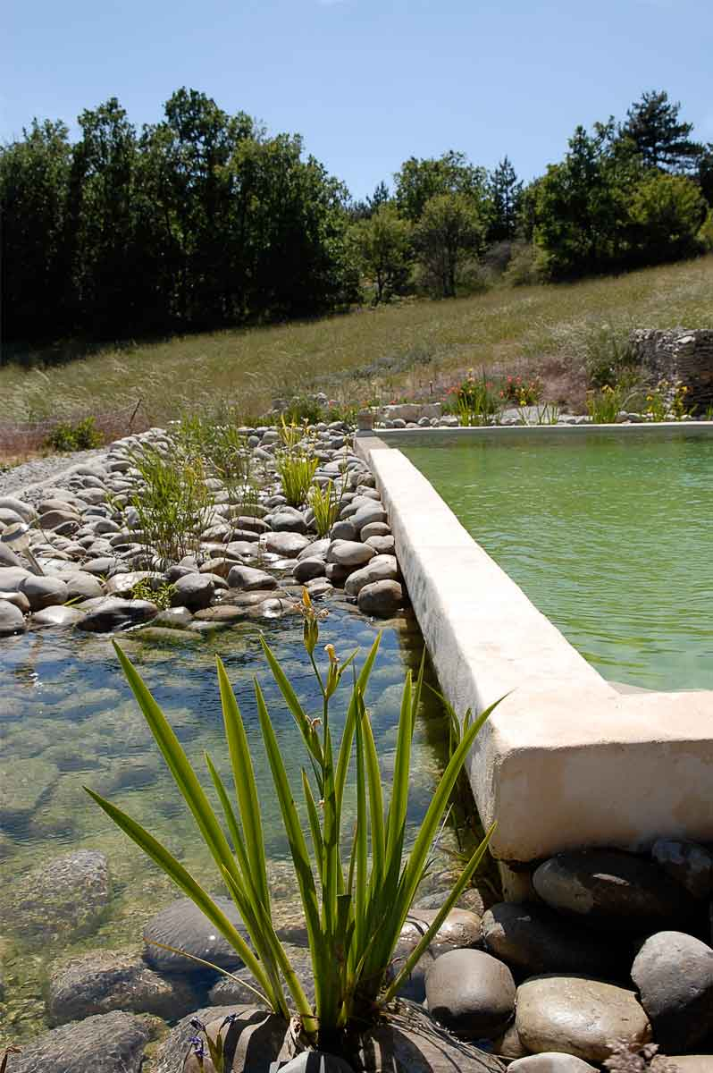 Systèmes de filtration naturelle pour un bassin