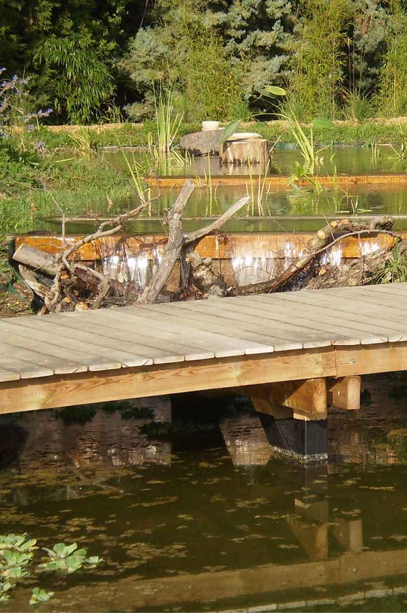 Aménagements en bois d'un bassin à filtration naturelle