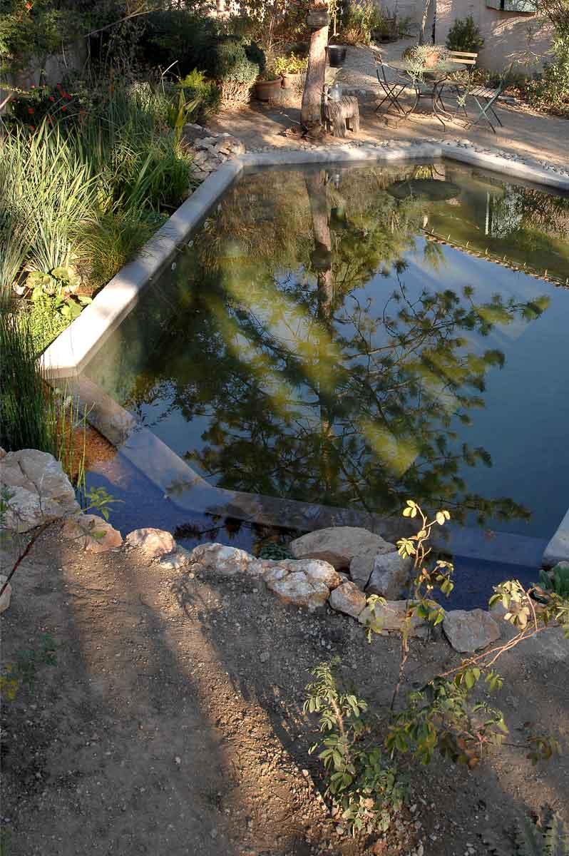 Création d'un petit bassin naturel