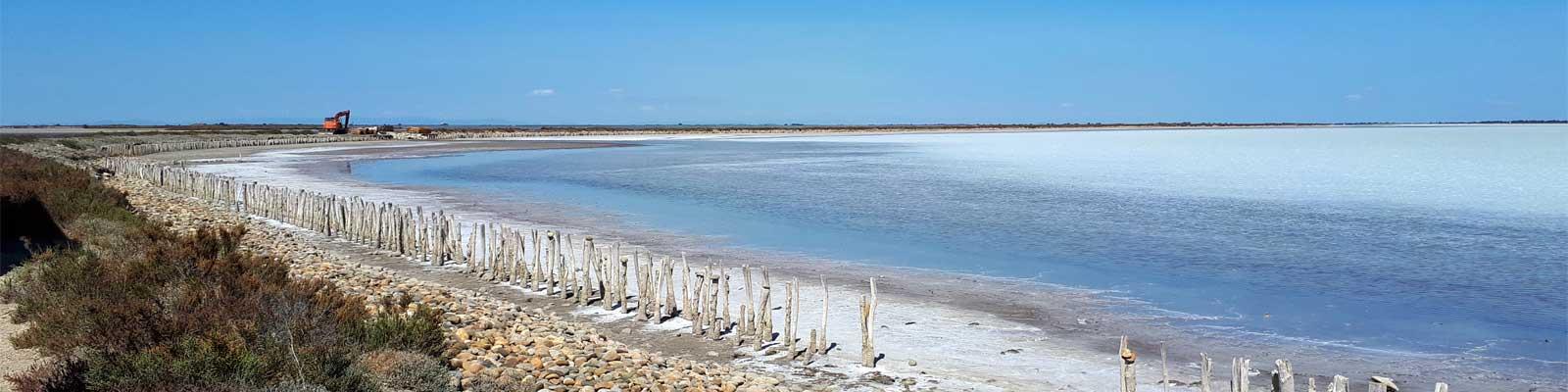 Travaux de génie écologique sur le littoral