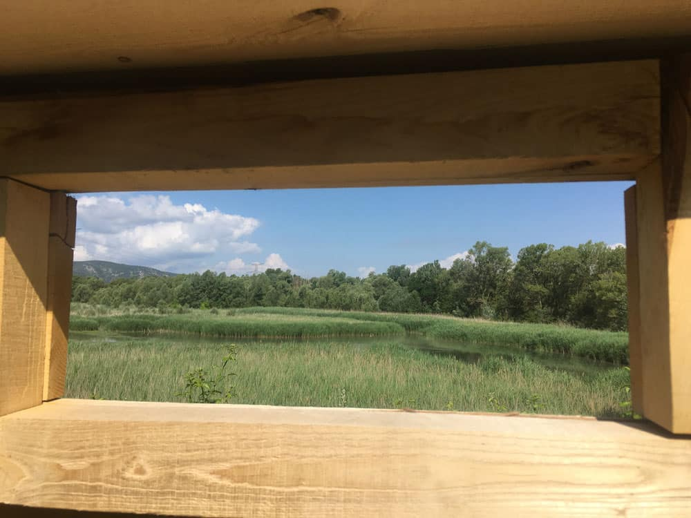 Palissade d'observation en bois