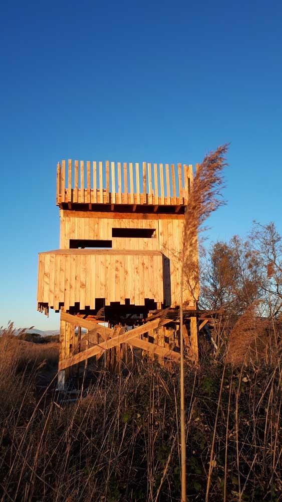Vue de la tour d'observation en bois - étangs de Villepey à Fréjus