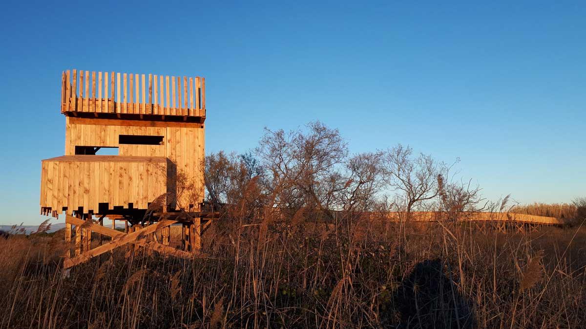 Observatoire en bois sur l'étang de Villepey - Fréjus