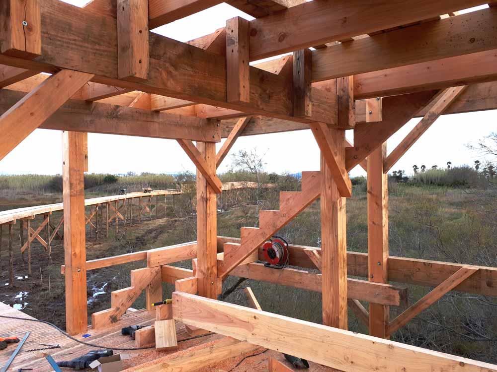 Charpente de l'observatoire bois des étangs de Villepey à Fréjus