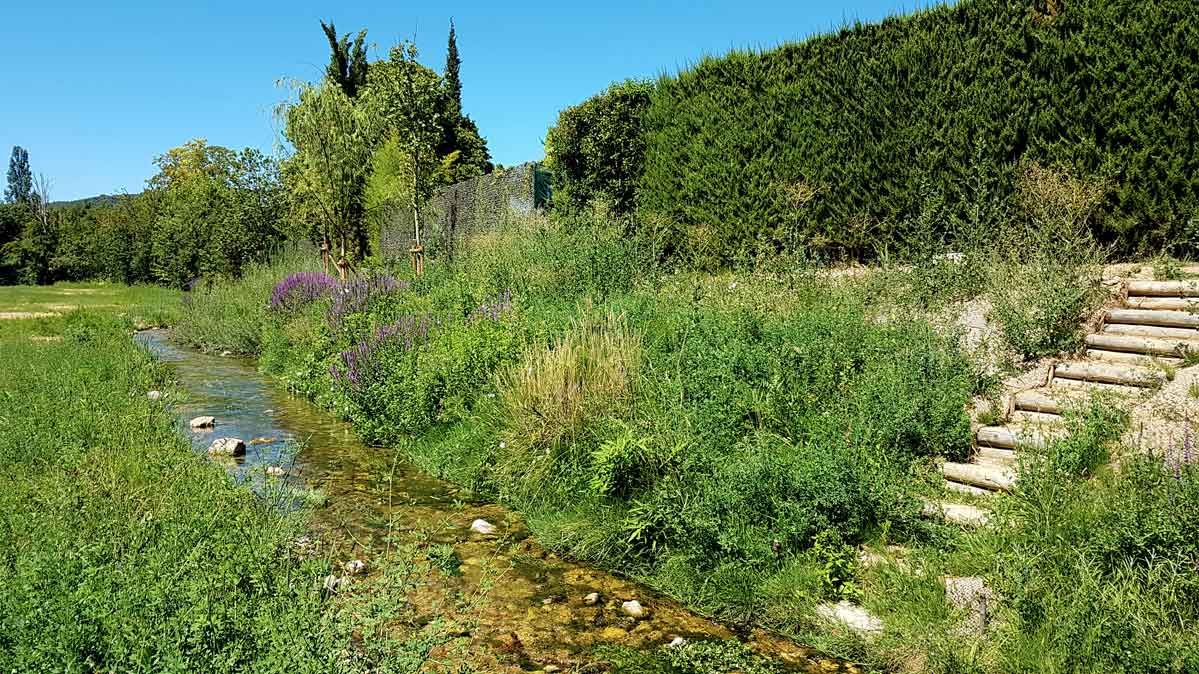 Génie végétal - Restauration des berges de l'Huveaune