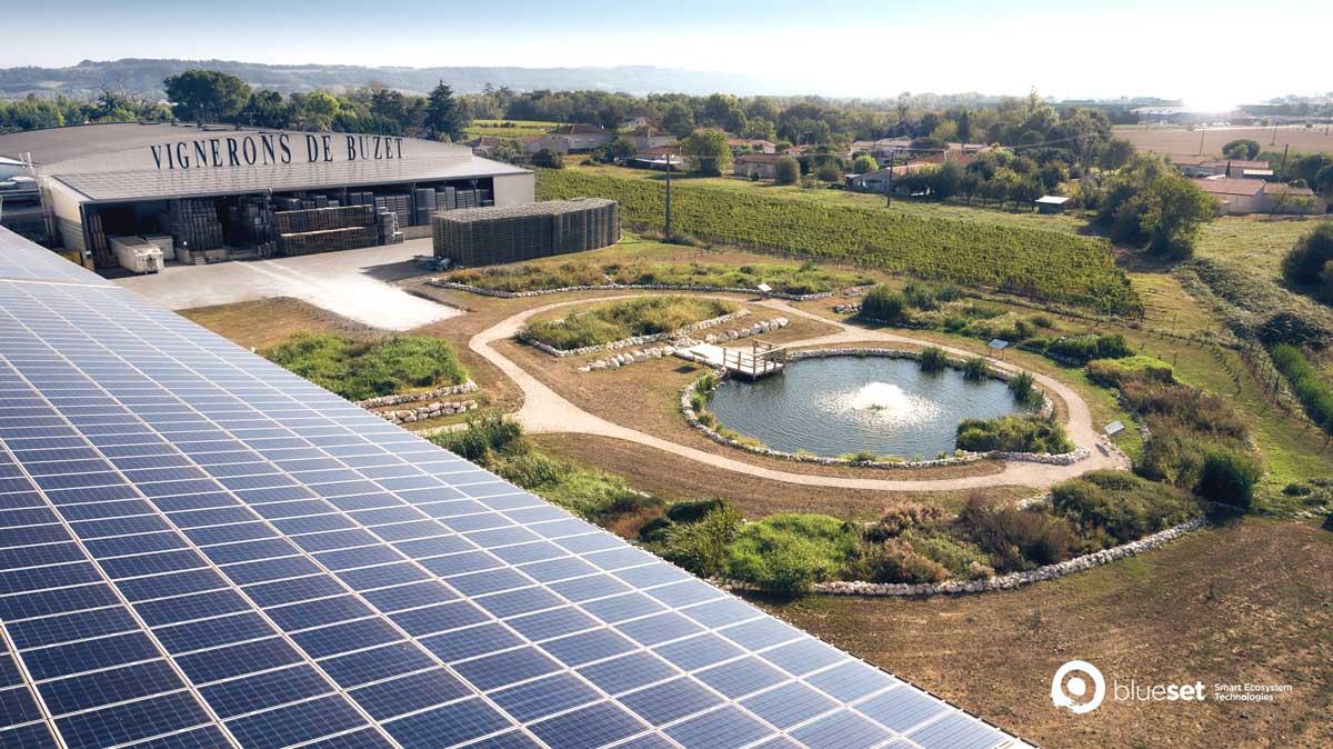 Station d'épuration écologique d'effluents vinicoles - © BlueSet