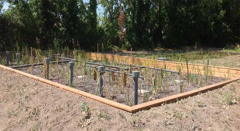 Station d'épuration écologique d'effluents agricole