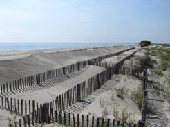 Stabilisation de dunes avec des ganivelles