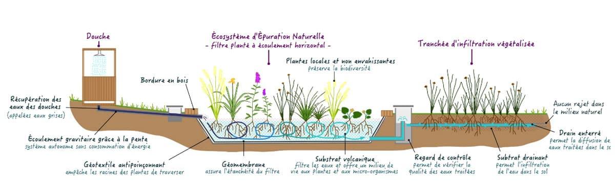 Douche assainissement écologique par phytoépuration - ©BlueSet