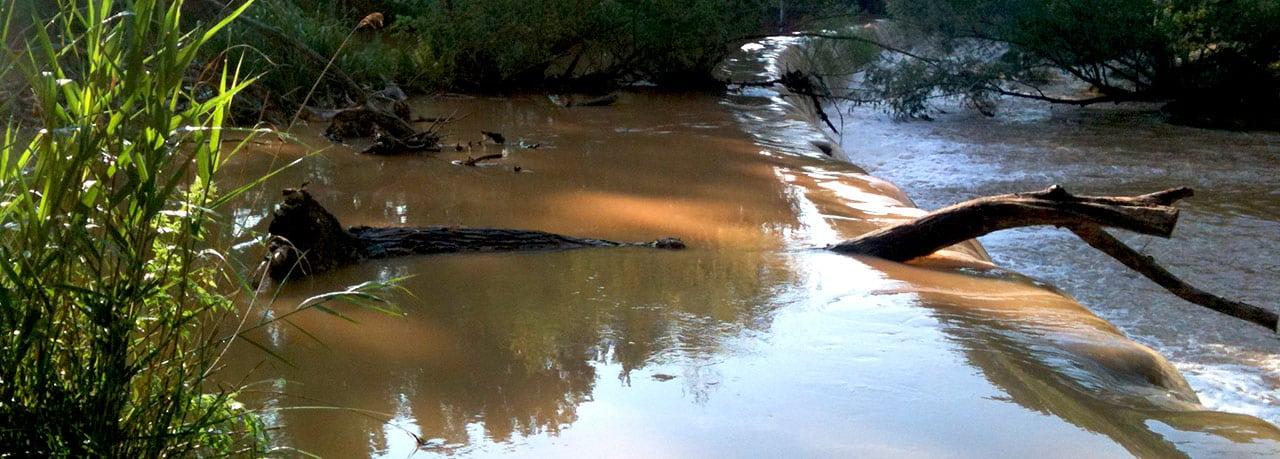 Entretien rivière - Embâcles