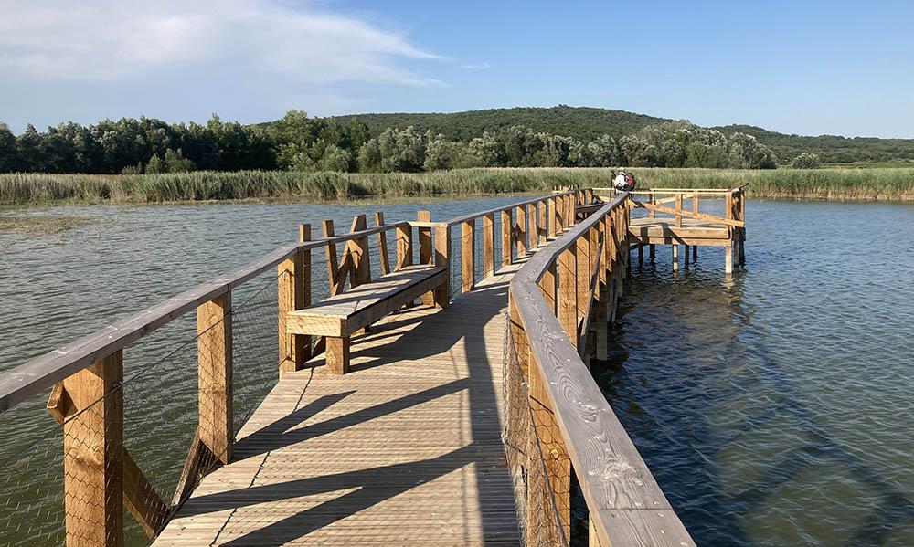 Ponton bois sur pieux battus étang de La Capelle et Masmolène