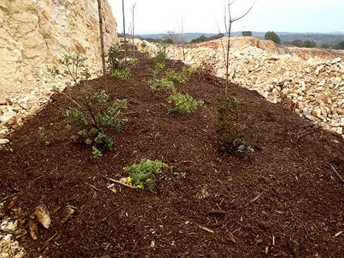 Réhabilitation de sites dégradés - végétalisation