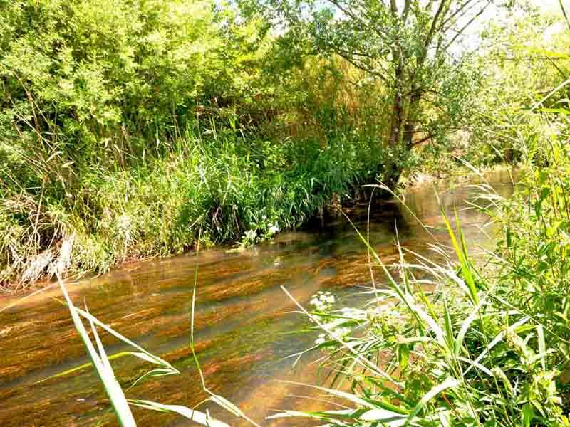 Génie écologique - Renaturation d'un cours d'eau
