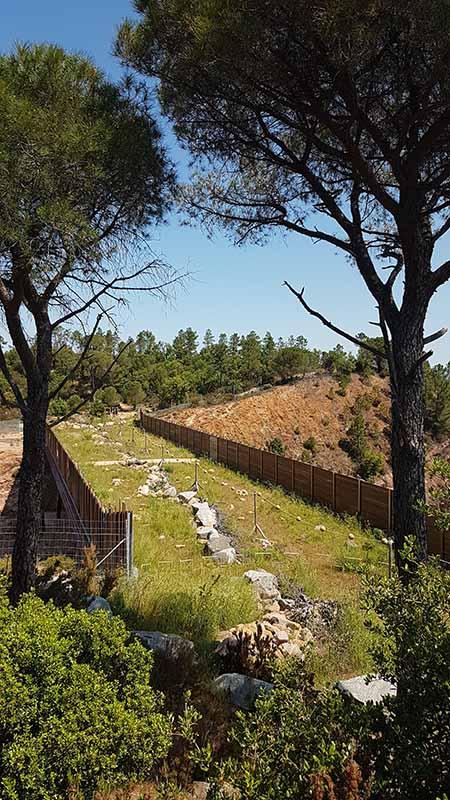 Corridor écologique - écopont