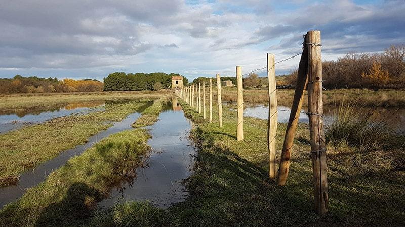Clôture agricole Camargue